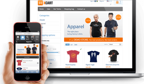 8 Things to take care before launching your Wordpress ecommerce website